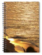 Golden Scenery Spiral Notebook