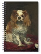 A King Charles Spaniel Spiral Notebook