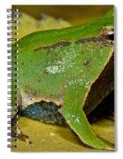 Darwins Frog Spiral Notebook