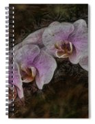 5 Dollar Orchid Spiral Notebook