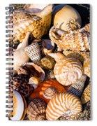 Mix Group Of Seashells Spiral Notebook