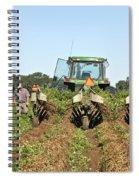 Peanut Harvest Spiral Notebook