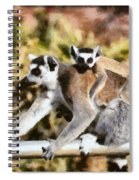Ring Tailed Lemur With Baby Spiral Notebook