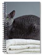 Russian Blue Spiral Notebook