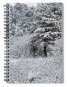 Snowstorm In The Pike National Forest Spiral Notebook