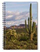 Sonoran Desert  Spiral Notebook