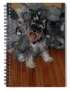Stuffed Animals Spiral Notebook