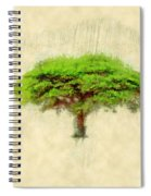 Umbrella Thorn Acacia Acacia Tortilis, Negev Israel Spiral Notebook