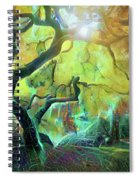 6 Abstract Japanese Maple Tree Spiral Notebook