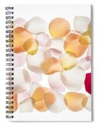 Back Lit Flower Petals  Spiral Notebook