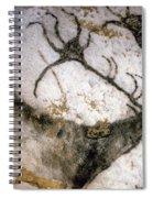 Cave Art: Lascaux Spiral Notebook