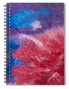 Color Abstracts Spiral Notebook
