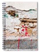 Damaged Wall Spiral Notebook