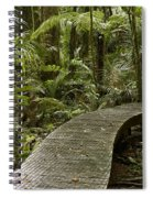 Forest Boardwalk Spiral Notebook