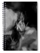 Knockout Roses Painted Bw Spiral Notebook