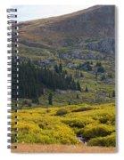 Mount Bierstadt In The Arapahoe National Forest Spiral Notebook