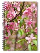 Pink Cherry Tree Spiral Notebook