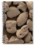 Sand Sem Spiral Notebook