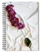 Silk Flower Spiral Notebook