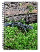 Slimy Salamander Spiral Notebook