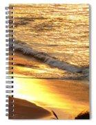 Black Sand 1 Spiral Notebook