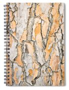 Tree Bark Spiral Notebook