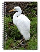 White Egret Spiral Notebook
