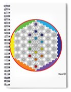 64 Tetra Chakra Activation Grid Spiral Notebook