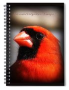 6751-010 Cardinal - Miss You Spiral Notebook