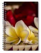 Bali Sculpture Spiral Notebook
