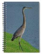 7- Great Blue Heron Spiral Notebook