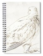Mourning Dove, Animal Portrait Spiral Notebook