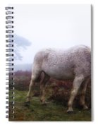 New Forest - England Spiral Notebook