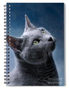 Russian Blue Cat Spiral Notebook