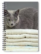Russian Blue Spiral Notebook