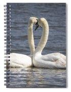 Swan -- Spiral Notebook