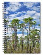 8- Cypress Sky Spiral Notebook