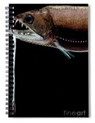 Deep Sea Dragonfish Spiral Notebook