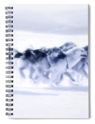 Huskies In Ilulissat, Greenland Spiral Notebook