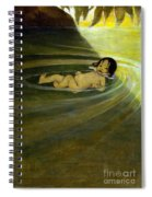 The Water Babies Spiral Notebook
