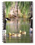 8132 - Canada Goose Spiral Notebook