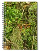 Mosses And Liverworts 8861 Spiral Notebook