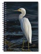 89- Snowy Egret Spiral Notebook