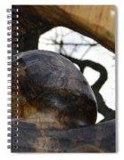 La Madonna Spiral Notebook
