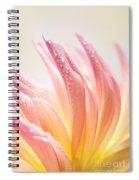 Dahlia Spiral Notebook