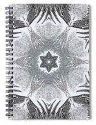 Fern Frost Mandala Spiral Notebook