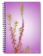 Judas Tree Cercis Siliquastrum Spiral Notebook