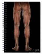Leg Musculature Spiral Notebook