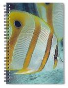 Malaysia Marine Life Spiral Notebook