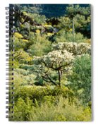 Saguaro Cactus Carnegiea Gigantea Spiral Notebook